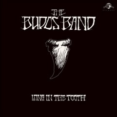 Long in the tooth /  the Budos Band. - the Budos Band.