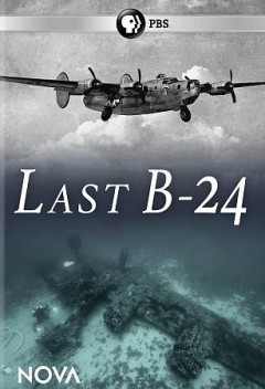 Last B-24 /  Lone Wolf Media ; produced and directed by Kirk Wolfinger. - Lone Wolf Media ; produced and directed by Kirk Wolfinger.