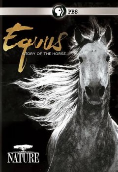 Nature - Equus: Story of the Horse.