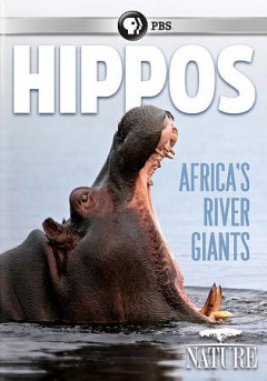 Hippos : Africa's river giants / an Icon Films and Natural History Film Unit Botswana production ; director, Brad Bestelink ; producers, Brad Bestelink, Bill Murphy. - an Icon Films and Natural History Film Unit Botswana production ; director, Brad Bestelink ; producers, Brad Bestelink, Bill Murphy.