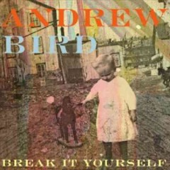 Break it yourself /  Andrew Bird.