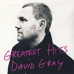 Greatest hits /  David Gray.