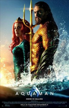 Aquaman /  [produced by Peter Safran, Rob Cowan ; screenplay by David Leslie Johnson-McGoldrick and Will Beall] ; directed by James Wan. - [produced by Peter Safran, Rob Cowan ; screenplay by David Leslie Johnson-McGoldrick and Will Beall] ; directed by James Wan.