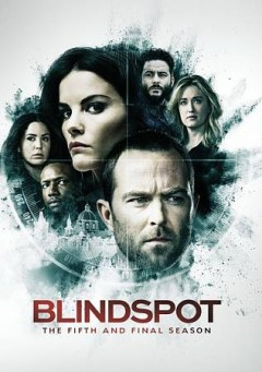 Blindspot : the fifth and final season [3-disc set].