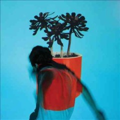 Sunlit Youth / Local Natives - Local Natives