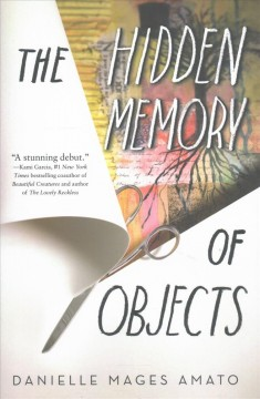 The hidden memory of objects /  Danielle Mages Amato. - Danielle Mages Amato.
