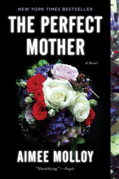 The perfect mother : a novel / Aimee Molloy.