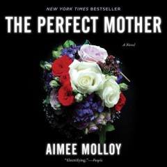 The perfect mother : a novel / Nina Darnton. - Nina Darnton.