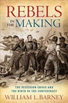 Rebels in the Making : The Secession Crisis and the Birth of the Confederacy