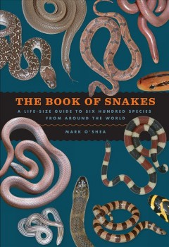 The book of snakes : a life-size guide to six hundred species from around the world / Mark O'Shea. - Mark O'Shea.
