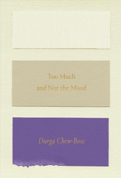 Too Much and Not the Mood : Essays