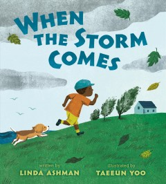 When the storm comes /  written by Linda Ashman ; illustrated by Taeeun Yoo.