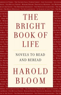 Bright Book of Life : Novels to Read and Reread