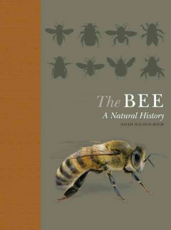 The bee : a natural history / Dr. Noah Wilson-Rich, with Kelly Allin, Norman Carreck & Dr. Andrea Quigley.