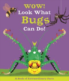 Wow! Look what bugs can do! /  Camilla de la Bedoyere ; illustrations, Ste Johnson.