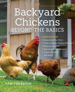 Backyard chickens : beyond the basics / Pam Freeman.