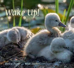Wake up! /  poem by Helen Frost ; photographs by Rick Lieder.