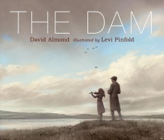 The dam /  David Almond ; illustrated by Levi Pinfold.