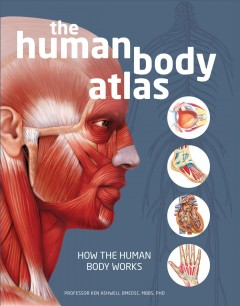 The human body atlas : how the human body works / professor Ken Ashwell BMedSC, MB, BS, PhD.