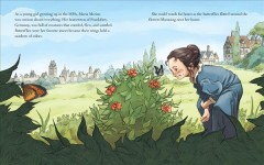 The bug girl : Maria Merian's scientific vision / Sarah Glenn Marsh ; illustrated by Filippo Vanzo.