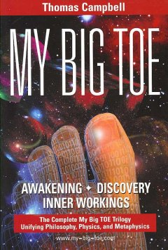 My big TOE : a trilogy unifying philosophy, physics, and metaphysics / Thomas Campbell.