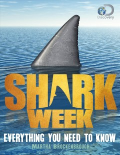 Shark Week : Everything You Need to Know