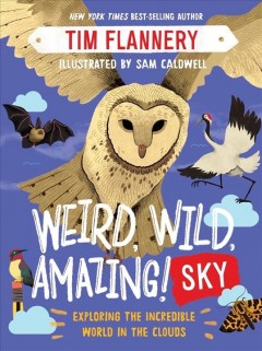 Weird, Wild, Amazing! Sky : Exploring the Incredible World in the Clouds