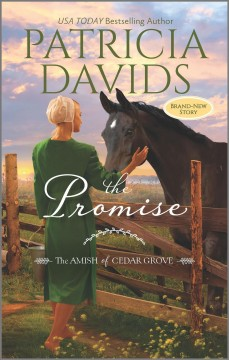 The promise /  Patricia Davids.