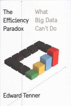 Efficiency Paradox : What Big Data Can't Do