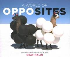 A world of opposites /  Gray Malin.