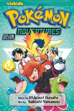 Pokemon Adventures 12