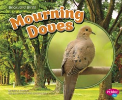 Mourning doves /  by Lisa J. Amstutz. - by Lisa J. Amstutz.