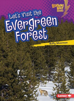 Let's visit the evergreen forest /  Buffy Silverman.