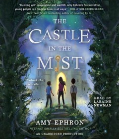 The castle in the mist /  Amy Ephron.