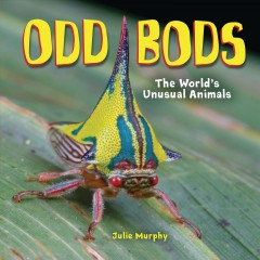 Odd bods : the world's unusual animals / Julie Murphy. - Julie Murphy.