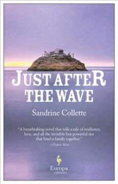Just after the wave /  Sandrine Collette ; translated from the French by Alison Anderson.