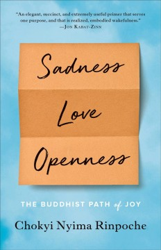 Sadness, Love, Openness : The Buddhist Path of Joy