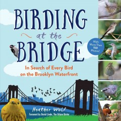 Birding at the Bridge : In Search of Every Bird on the Brooklyn Waterfront