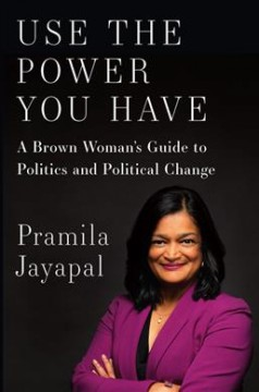 Use the Power You Have : A Brown Woman's Guide to Politics and Political Change