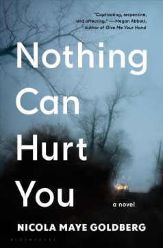 Nothing can hurt you : a novel / Nicola Maye Goldberg. - Nicola Maye Goldberg.