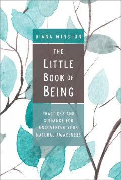 Little Book of Being : Practices and Guidance for Uncovering Your Natural Awareness