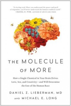 Molecule of More : How a Single Chemical in Your Brain Drives Love, Sex, and Creativity—and Will Determine the Fate of the Human Race
