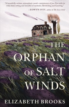 The orphan of Salt Winds /  Elizabeth Brooks.