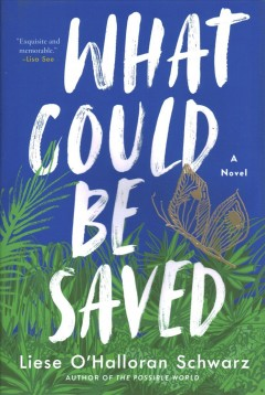 What could be saved : a novel / Liese O'Halloran Schwarz.
