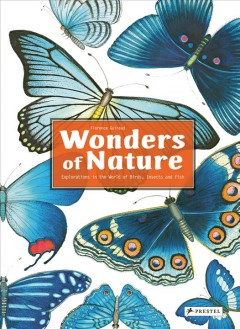 Wonders of nature : explorations in the world of birds, insects and fish / Florence Guiraud ; translated from the French by Paul Kelly.