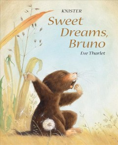 Sweet dreams, Bruno /  Knister ; with pictures by Eve Tharlet ; translated by Kathryn Bishop.